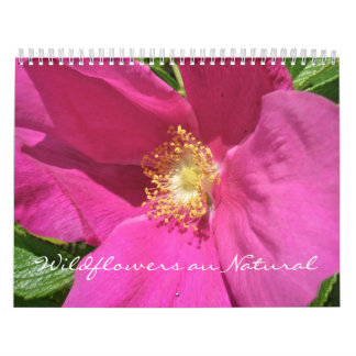 Calendar - Wildflowers au Natural
