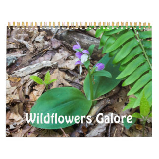 Calendar ~ Wildflowers Galore