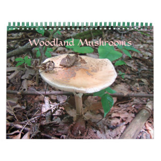 Calendar - Woodland Mushrooms