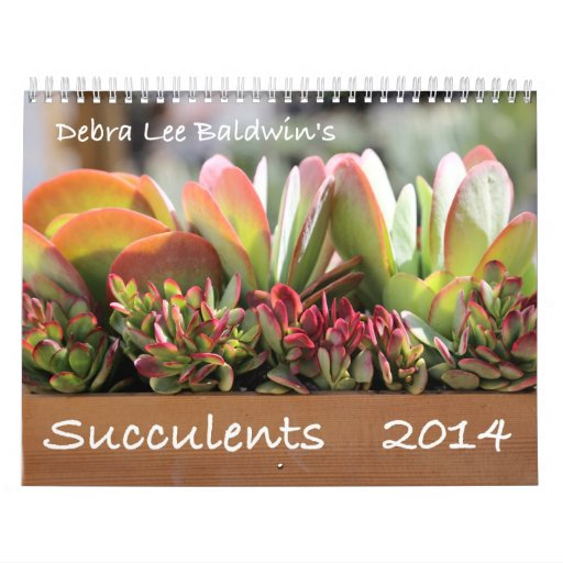 Calendrier des Succulents 2014 par Debra Lee