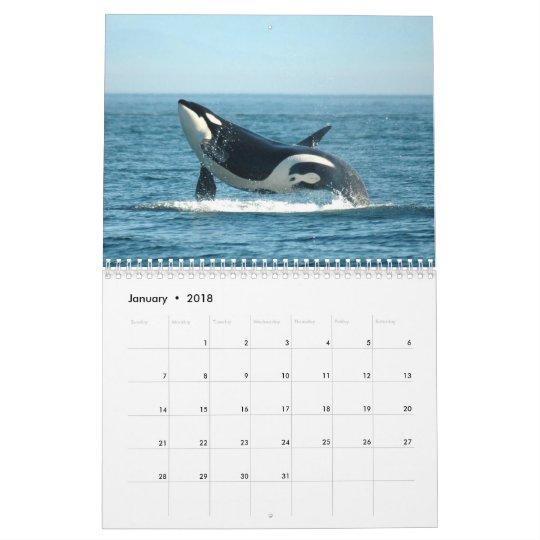 Calendrier du ~ 2012 d'orques