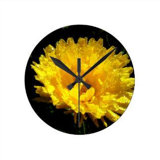 Calendula aka Pot Marigold Clocks