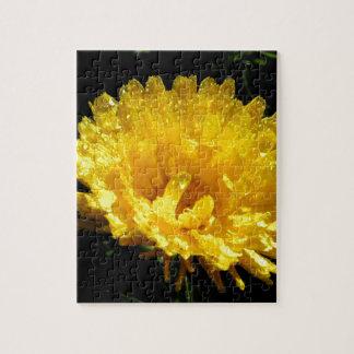Calendula aka Pot Marigold Puzzle
