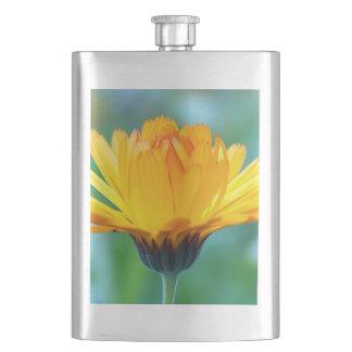 calendula flasks