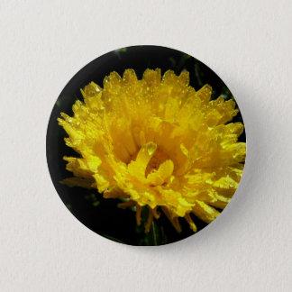 Calendula Gold 2 Inch Round Button