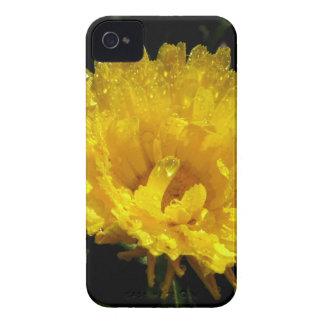 Calendula Gold iPhone 4 Cover