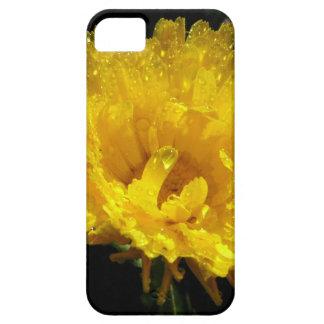 Calendula Gold iPhone 5 Covers