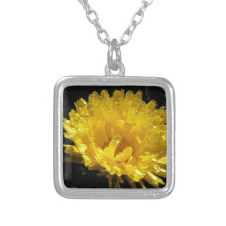 Calendula Gold Silver Plated Necklace