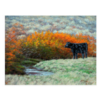 Calf by Creek in the Fall Postcard