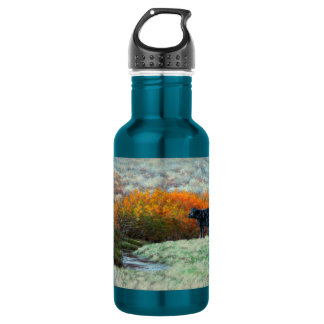 Calf by Creek in the Fall Water Bottle