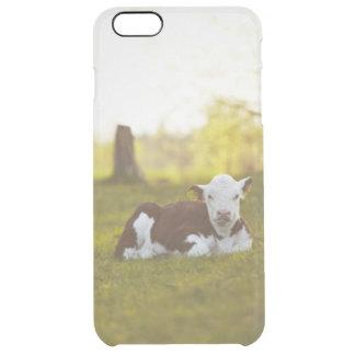 Calf Resting Clear iPhone 6 Plus Case