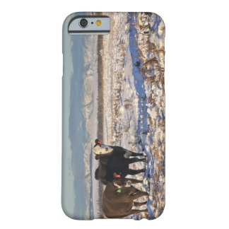 calgary, alberta, canada barely there iPhone 6 case