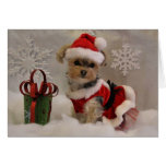 Cali Lollipop Christmas Cheer Blank Note Card