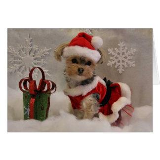 Cali Lollipop Christmas Cheer Blank Note Card