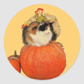 Calico Cat and Scarecrow on Pumpkins Round Sticker