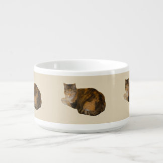 Calico Cat Bowl