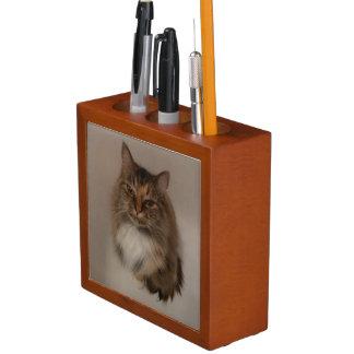 Calico Cat Desk Organizer