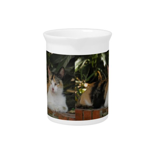 Calico Cat Drink Pitcher