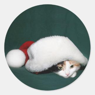Calico cat Santa sticker