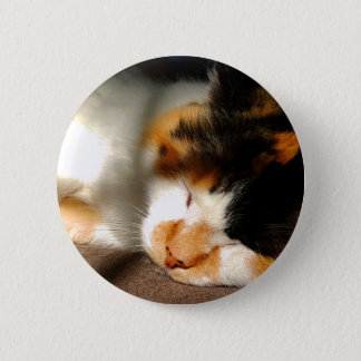 Calico Cat Sunning 2 Inch Round Button