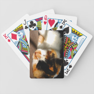 Calico Cat Sunning Bicycle Playing Cards