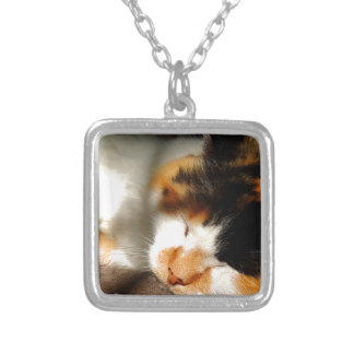 Calico Cat Sunning Silver Plated Necklace
