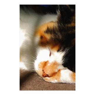 Calico Cat Sunning Stationery
