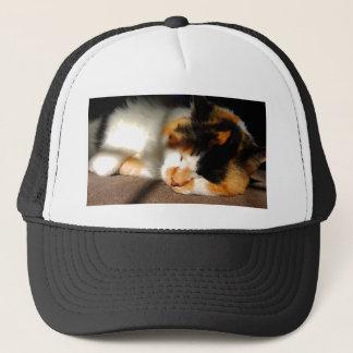 Calico Cat Sunning Trucker Hat