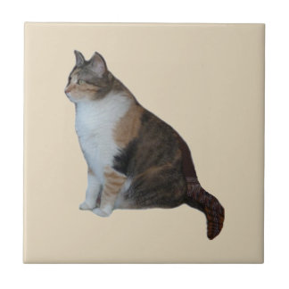 Calico Cat Tile