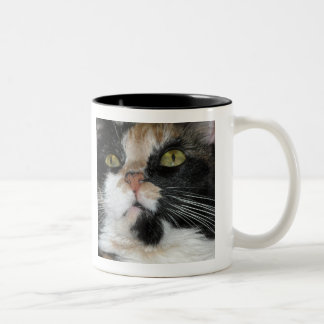Calico Cat Two-Tone Coffee Mug