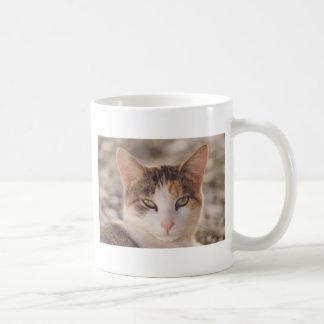 calico coffee mug