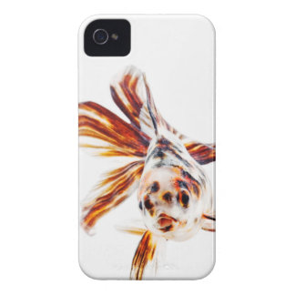 Calico Fantail Comet goldfish (Carassius iPhone 4 Cases