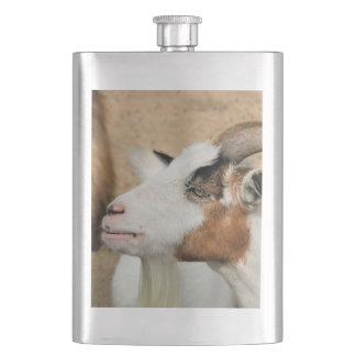 Calico goat hip flask