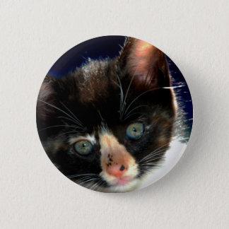 Calico Kitten Button