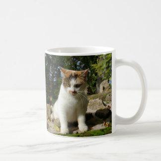 Calico Kitten Coffee Mug