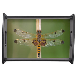 Calico Pennant Serving Platter