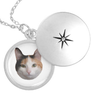 Calico Portrait Silver Plated Necklace