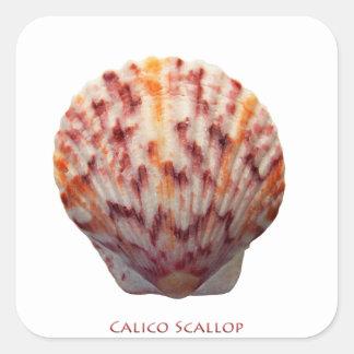 Calico Scallop Shell Square Sticker
