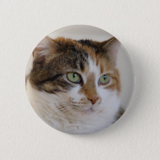 Calico tabby cat face 2 inch round button