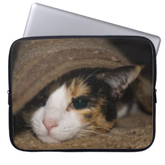 Calico Taco Laptop Computer Sleeves