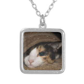 Calico Taco Silver Plated Necklace