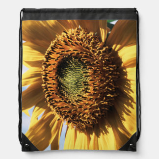 California, A Mammoth Sunflower (Helianthus) 1 Backpack