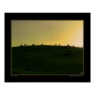 California Cows on a Ridge at Sunset Poster
