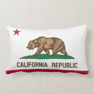 California flag, American state flag Throw Pillow