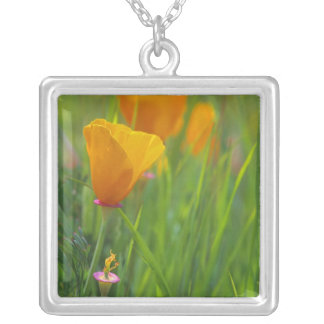 California golden poppies in a green field silver plated necklace