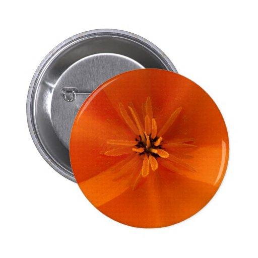 California Golden Poppy Macro Button