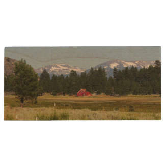California HWY 395 Landscape Wood USB 2.0 Flash Drive