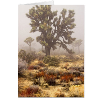 California: Joshua Tree National Monument, Greeting Card