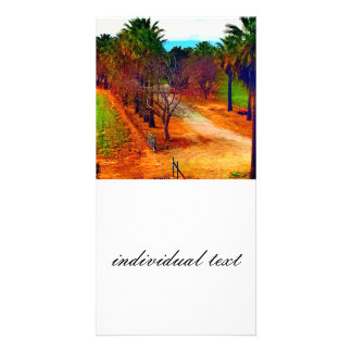 California landscape photo card template