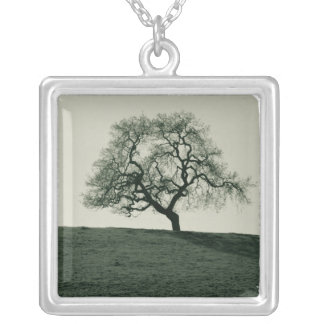 California Live Oak Necklace